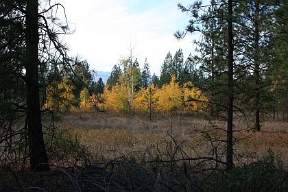 fall-2007-313.jpg